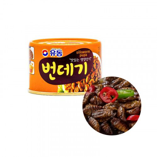 Dongwon  YUDONG Seidenraupenpuppe in Dose 130g 1