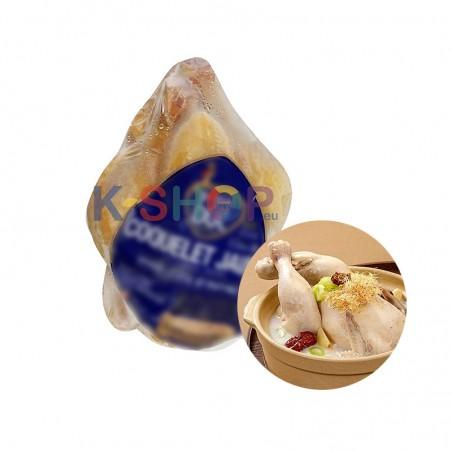 SUBIN  (TK) Ein junges Huhn (für Samgyetang / ca. (450-500g) 1